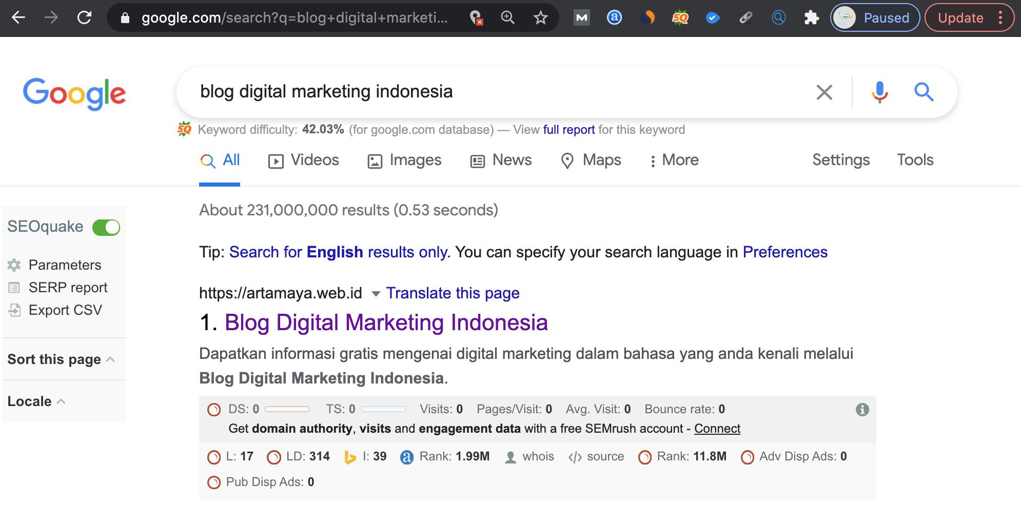 Ranking website hasil SEO
